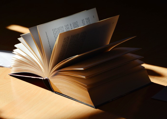 Literatuurrecensie, de Da Vinci Code